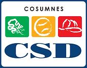 CSDlogo_Cosumnes-color-no-tag-no-depts.p