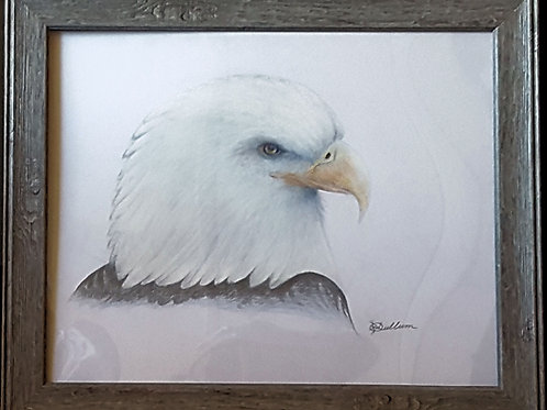 BALD EAGLE (ORIGINAL)