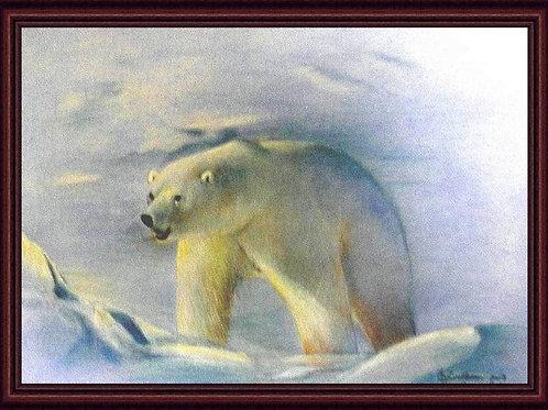 """Polar Bear"" (LTD PRINT OF /5)"