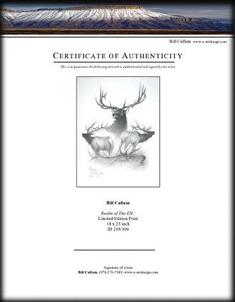 REALM-CertificateofAuthenticity-page0001