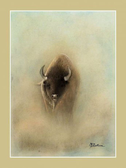 AMERICAN BISON (LTD PRINT OF / 5