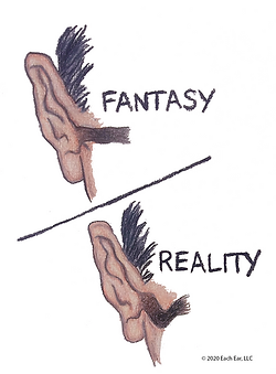 Fantasy-Reality 12-1-2020 - art only.png