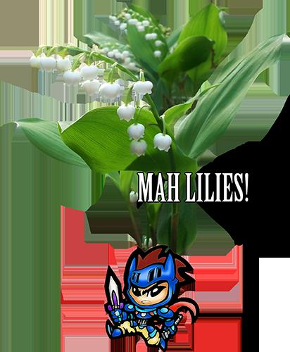 Mah lilies