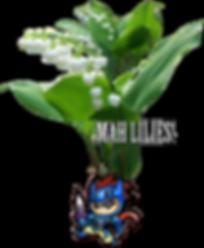 Lilies of Conan Hollander