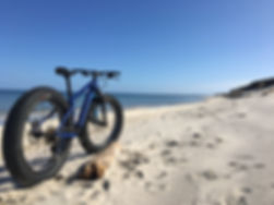 fat bike full res.JPG