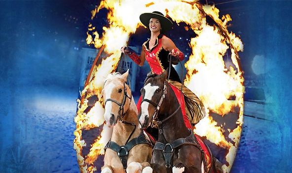 2014 branson shows, horse show, trick horses, missouri fair