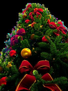 Branson Christmas, Branson tree, Branson holidays, Christmas on the trail
