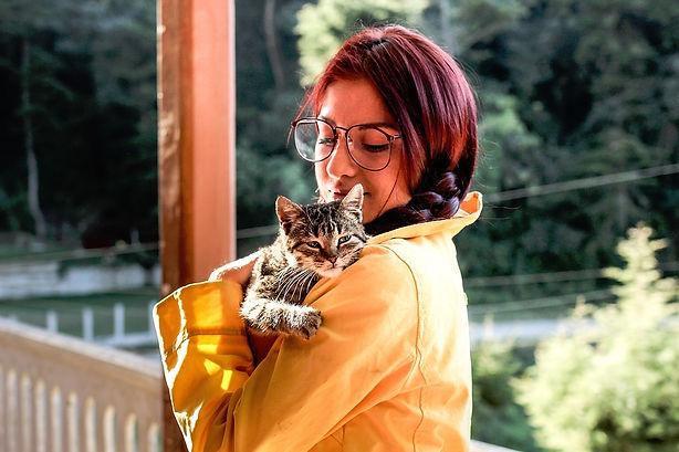 veterinarian formulated pet cbd