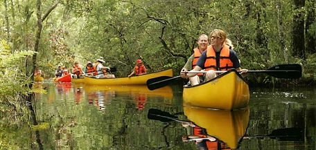 guided kayak tours, glades trip, fun family outdoor activities