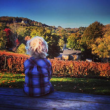 branson wineries, fall ozarks colors, kid looking at mountains
