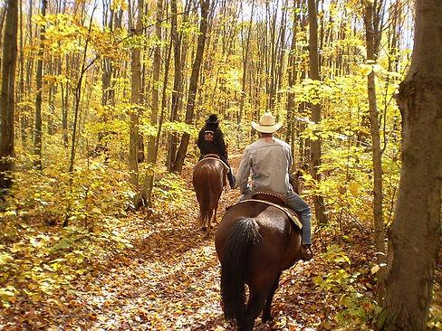 shepherd of the hills, bear creek trail rides, ozark mountain hiking