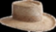 cowboy hat, straw sun visor
