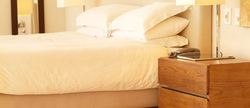 Pet Friendly Branson Hotel Deals