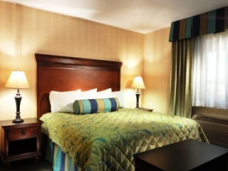 hotel king bedroom, luxury hotel, family vacation hotel