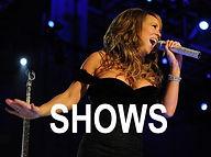 show, concert