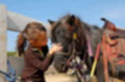 things to do for kids in missouri, little girl baby pony