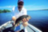 crappie fish, hook and lure caught, branson fishing resorts