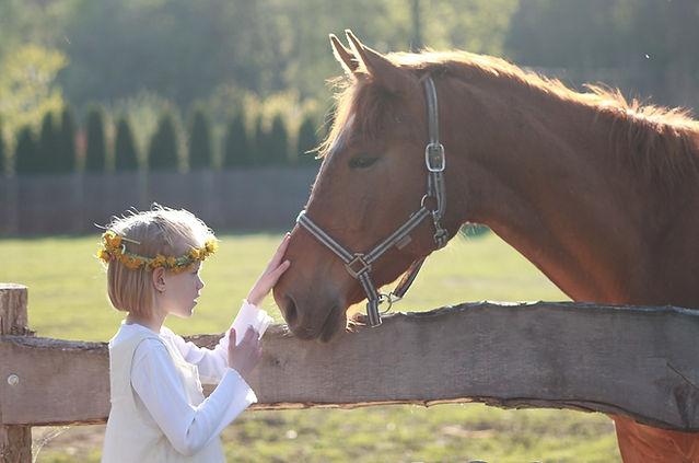 branson horseback riding, child petting a horse, missouri farms