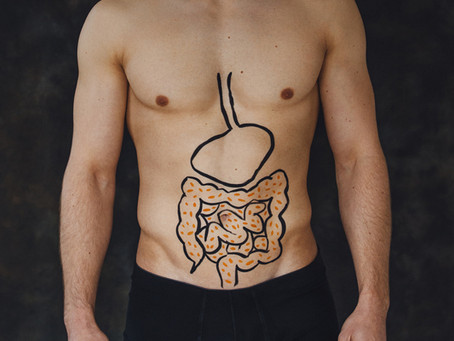 Gut bacteria - its in the balance