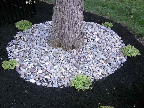 River stone used in landscape arond base of tree in circular shape