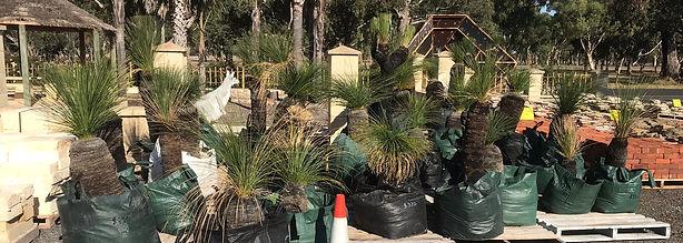 Grasstress Bunbury Landscaping Supplies