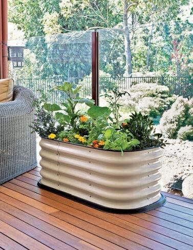 flowers in raised garden bed