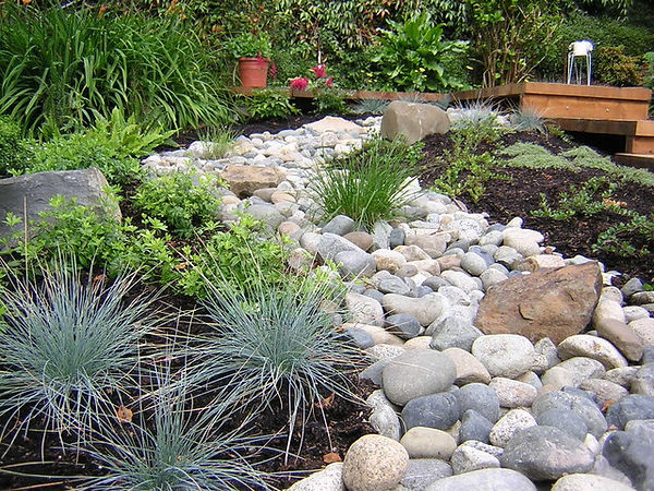 Large river stone landscaped into shape of stream surround by native plants and shrubs