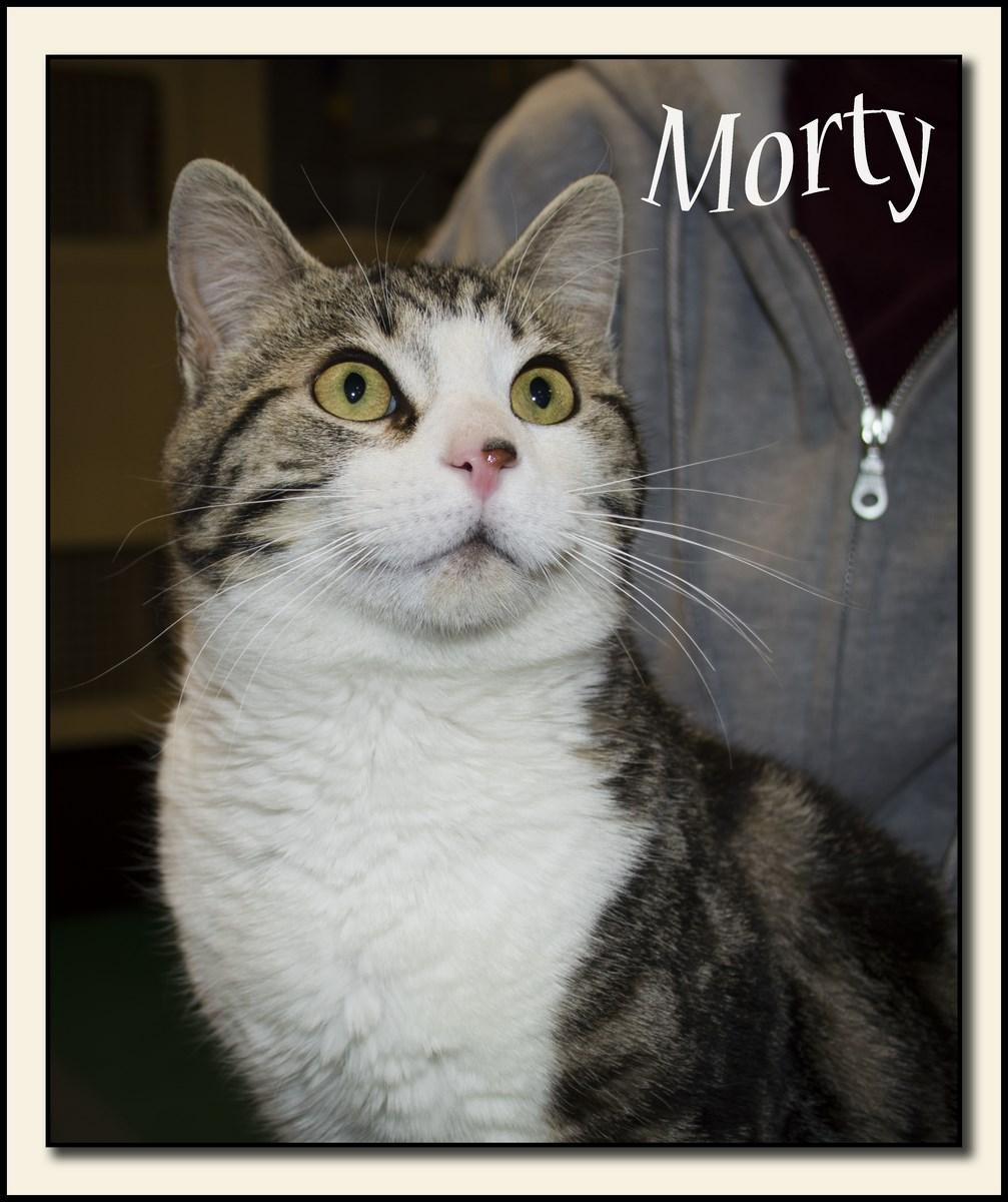 morty+(Copy).jpg