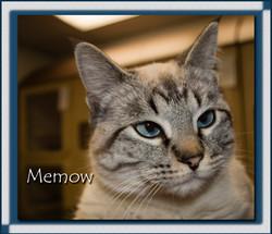 Memow2.jpg