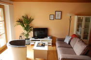 Spacious living room in the Kandl Spitze apartment with mountain views