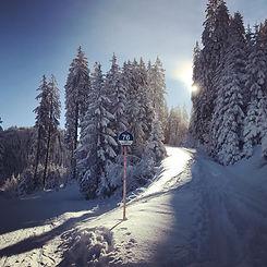 Skiing in Kitzbühel and Zell am See Kaprun