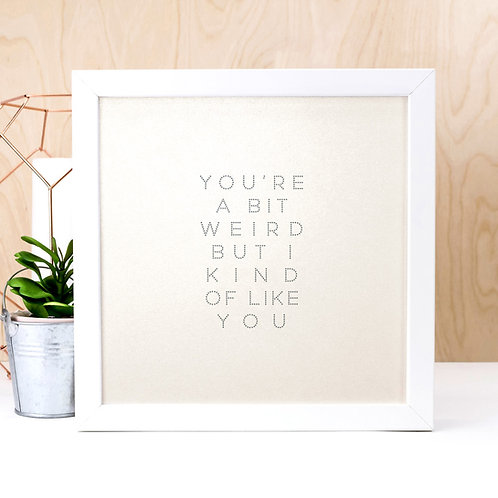 Bit Weird But I Like You | Funny Quote Print