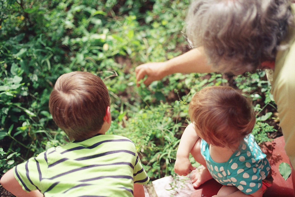 Retired Grandparent Gardening with Grandkids
