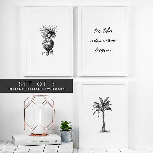 Set of 3 Tropical Printable Wall Art for Adventurers [DOWNLOAD ONLY]