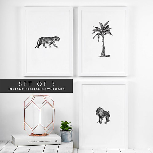 Set of 3 Jungle Animals Printable Wall Art [DOWNLOAD ONLY]