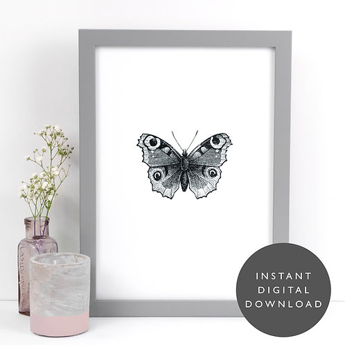 Butterfly Insect A4 Printable Vintage Wall Art [DOWNLOAD ONLY]