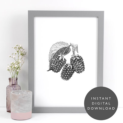 Vintage Raspberry Fruit A4 Printable Kitchen Wall Art [DOWNLOAD ONLY]