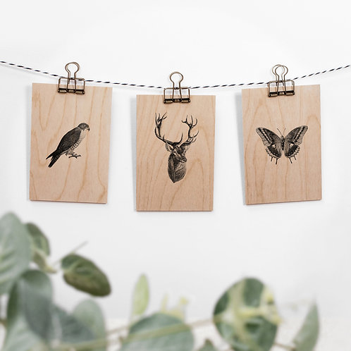 Woodland Animals Set of 3 Hanging Wooden Signs