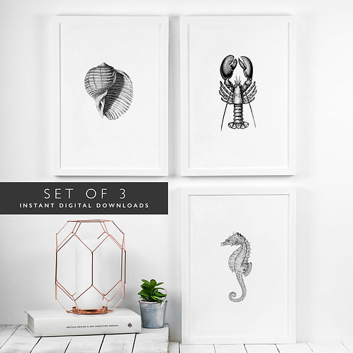 Set of 3 Beach Bathroom Printable Wall Art [DOWNLOAD ONLY]