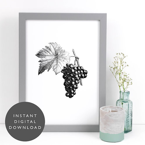 Vintage Fruit | Grapes | A4 Printable Kitchen Wall Art [DOWNLOAD ONLY]