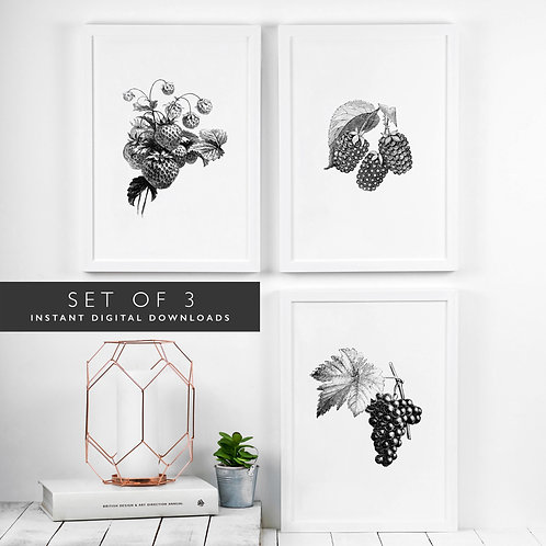 Set of 3 Summer Fruits Printable Wall Art [DOWNLOAD ONLY]