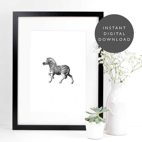 Safari Animal Zebra A4 Printable Nursery Wall Art [DOWNLOAD ONLY]