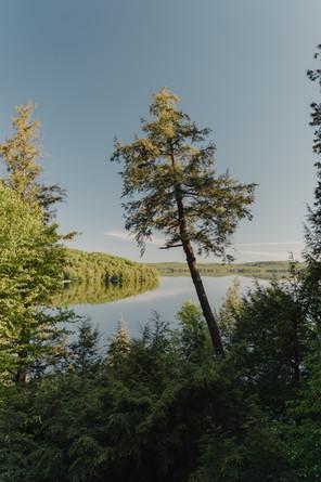 The Birchwood Redstone Lake - VA (152).j