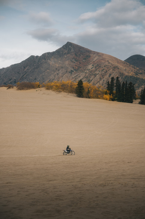 Carcross desert (2).jpg