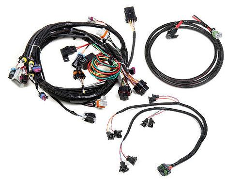 558-500 EFI HARNESS for GM LS1/6