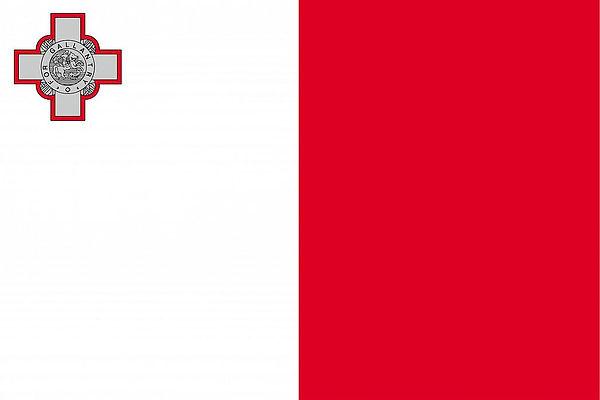 mt-flag.jpg
