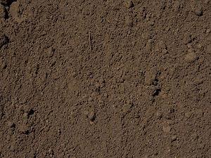 Screened Top Soil.jpg