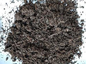 Mushroom Soil.jpg
