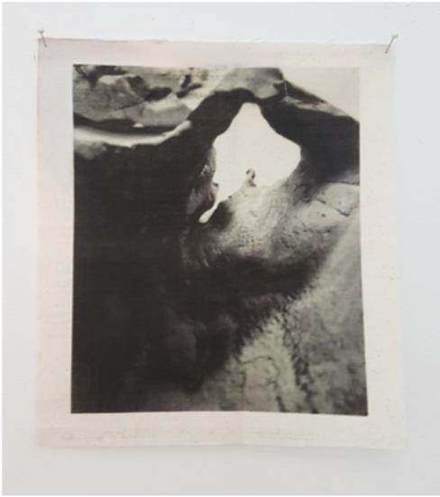 Beheld, Bestilled (extreme close-ups #5) by Annie Areum Shin