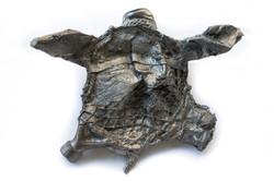 turtle trash 1